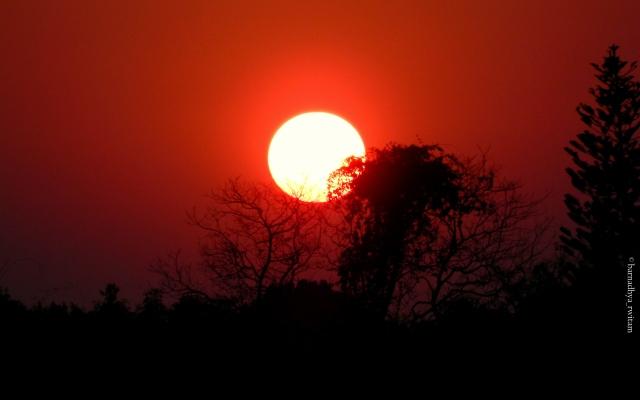A Lovely Sunset